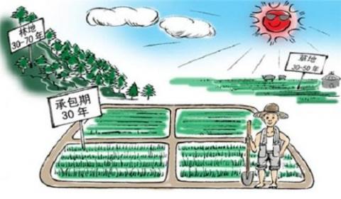 土地承包经营权转让条件有哪些?地承包经营权流转要遵守什么规定?